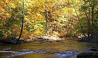 Cuyahoga River in the Fall by D.J Reiser