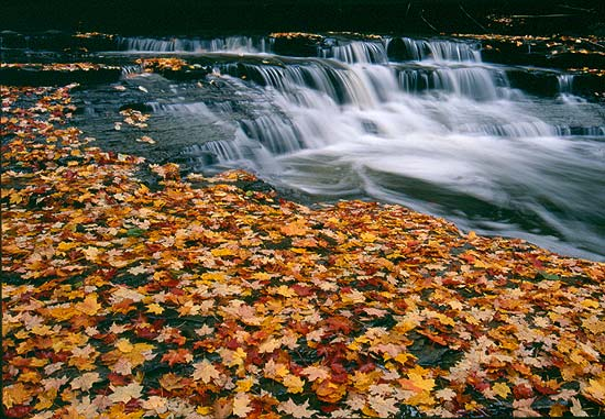 Cuyahoga Vally National Park Photo by Tom Jones